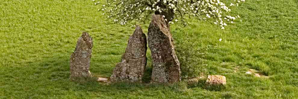 Les trois menhirs d'Oppagne.